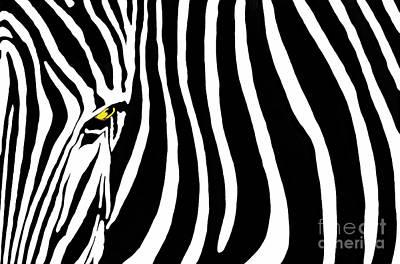 Zoo Animal Photograph - Zebra Stripes Two Gfx by Dan Holm