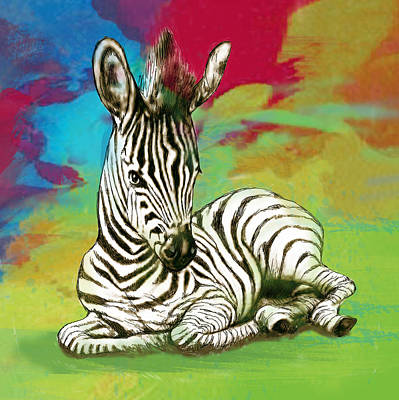 Zebra Drawing - Zebra - Stylised Drawing Art Poster by Kim Wang
