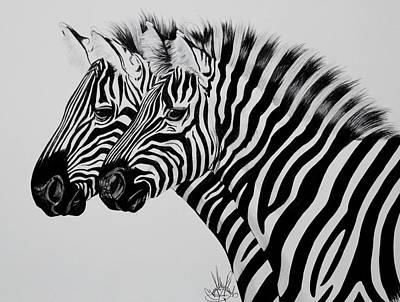 Drawing - Zebra Twins by Cheryl Poland