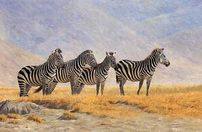 Zebras Ngorongoro Crater Art Print by David Stribbling