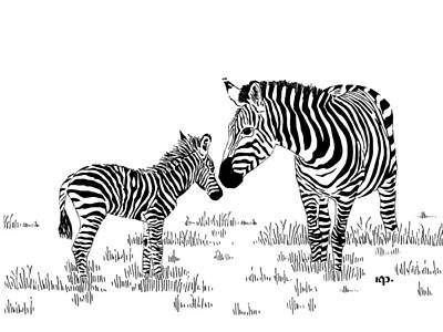 Optical Illusion Drawing - Zebras by Robert Powell