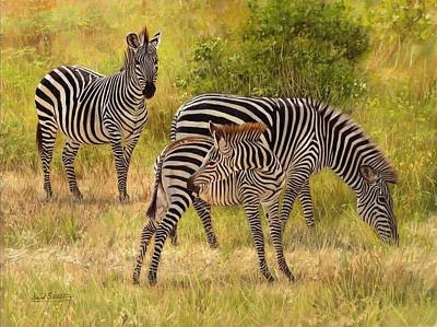 Zebra Painting - Zebras South Luangwa by David Stribbling