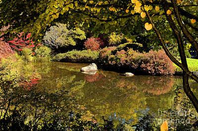 Digital Art - Zen Fall Colors by Eva Kaufman