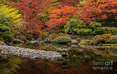 Symmetry Photograph - Zen Foliage Colors by Mike Reid