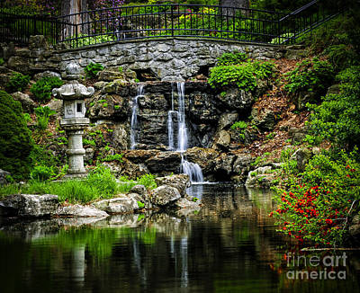 Photograph - Zen Garden by Elena Elisseeva