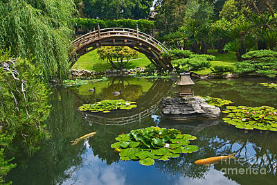 Zen - Japanese Garden With Moon Bridge And Lotus Pond With Koi Fish. Art Print