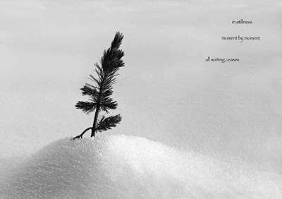 Art Print featuring the photograph Zen Wisdom Stillness by Peter v Quenter