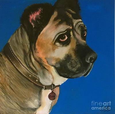 Painting - Zena The Dog by Caroline Peacock