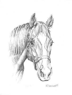 Thoroughbred Drawing - Ziggy by Richard De Wolfe