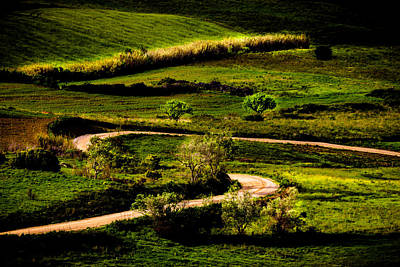 Photograph - Zigzags Of A Path by Edgar Laureano