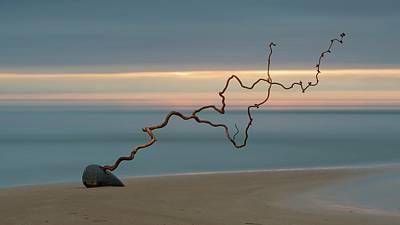 Shore Line Photograph - Ziliz by Eduard Gorobets