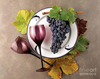 Photograph - Zinfandel Still Life by Craig Lovell