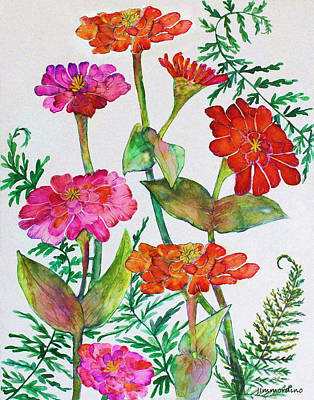 Zinnia And Ferns Print by Janet Immordino