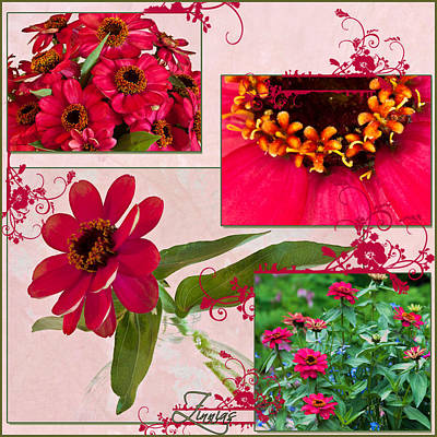 Collage Photograph - Zinnias Four Photo Collage  by Sandra Foster
