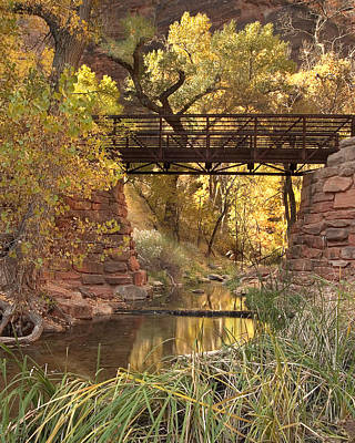 Fall Foliage Photograph - Zion Bridge by Adam Romanowicz