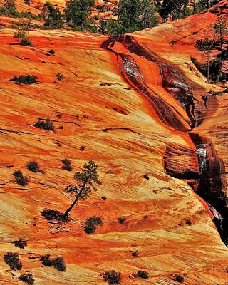 Photograph - Zion Inspiration by Benjamin Yeager