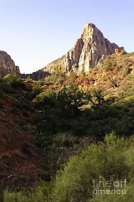 Photograph - Zion Landscape by Richard J Thompson