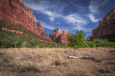 Photograph - Zion Morning by Tim Bryan