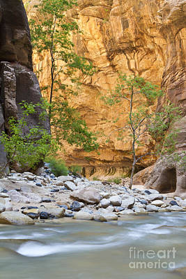 Art Print featuring the photograph Zion Narrows by Bryan Keil