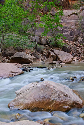 Valentines Day - Zion Narrows by Michael Vincent