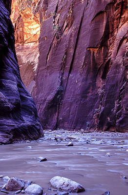 Zion Narrows Art Print