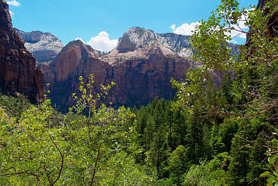 Photograph - Zion National Park 11 by Richard J Cassato