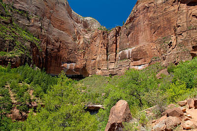 Photograph - Zion National Park 20 by Richard J Cassato