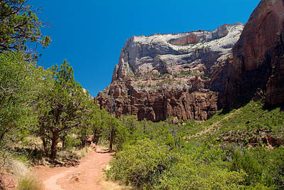 Photograph - Zion National Park 21 by Richard J Cassato