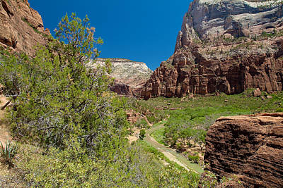 Photograph - Zion National Park 23 by Richard J Cassato