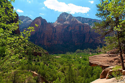 Photograph - Zion National Park 9 by Richard J Cassato