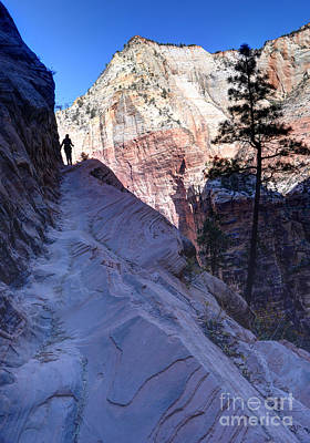 Ledge Photograph - Zion National Park Hiker Climbs Hidden Canyon Trail by Gary Whitton