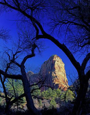 Strong America Photograph - Zion National Park, Utah by Scott T. Smith