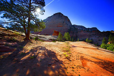 Photograph - Zion National by Richard Wiggins