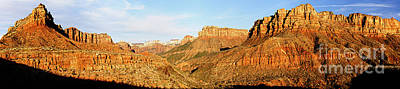 Photograph - Zion Panorama by Larry Ricker