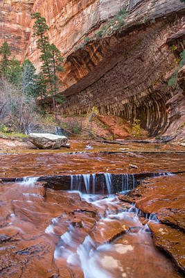 Cascade Canyon Photograph - Zion Wilderness by Pierre Leclerc Photography