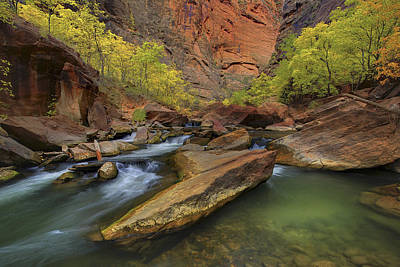 Outdoor Photograph - Zions 53 by Ingrid Smith-Johnsen