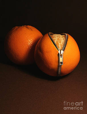 Hand Made Photograph - Zipped Oranges by Jaroslaw Blaminsky