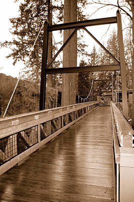 Photograph - Zoo Bridge by Holly Blunkall