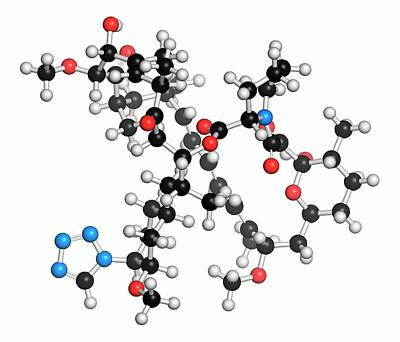 Zotarolimus Immunosuppressant Molecule Art Print by Molekuul
