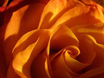 Zowie Rose Art Print