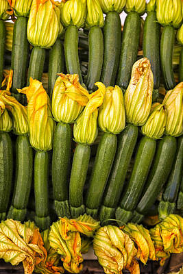 Zucchini Flowers Closeup Art Print