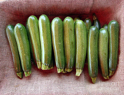 Zucchini Photograph - Zucchinis by Olivier Le Queinec