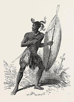 South Africa Drawing - Zulu Warrior, Kaffraria, South Africa by South African School