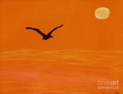 Birds Drawing - Pelican Silhouette Sunset by D Hackett