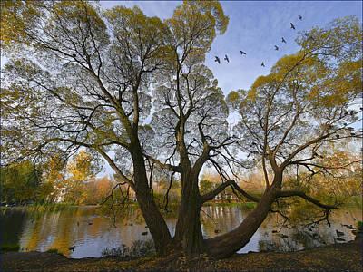 Photograph -  A Day Of October by Vladimir Kholostykh