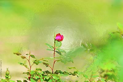 A Rose  Art Print by Gib LaStrapes