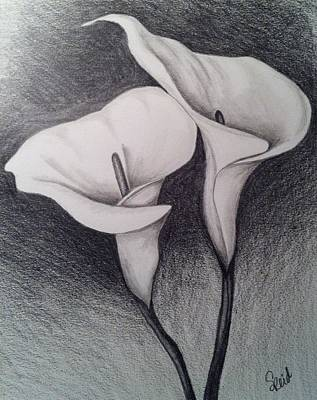 Painting -  Calla  by Stephanie Reid