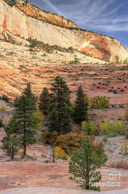 Photograph -  East Zion Canyon Hdr by Sandra Bronstein