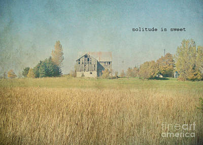 Photograph -  Farm House Solitude by Traci Cottingham
