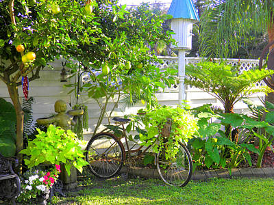 Photograph -  Garden With Bicycle by Lou Ann Bagnall